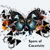 Illustration or flyer design, vector background with butterflies Royalty Free Stock Photography