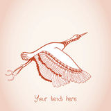 Illustration of flying bird, creative hand drawn card Royalty Free Stock Photography