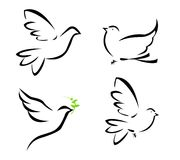 Illustration of flying dove Stock Photography