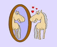 Illustration foal in mirror Royalty Free Stock Photos