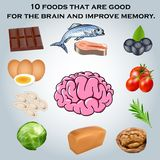 10 foods that are good for the brain and improve me. Illustration 10 foods that are good for the brain and improve memory stock illustration