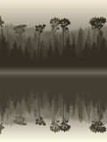Illustration of forest with its reflection in water. Stock Images