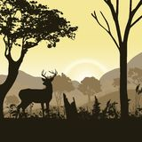 Illustration of a forest landscape with deer. Beautiful realistic illustration of a forest landscape with different types of trees and grasses. Sky with rising Stock Images