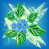 Illustration with forget-me-not flower Stock Photo