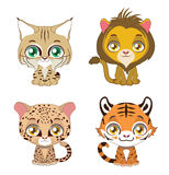 Illustration of four different big cats Royalty Free Stock Photo