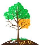 Illustration of four seasons Stock Image