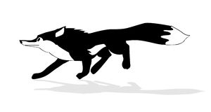 Illustration of the fox Royalty Free Stock Photo