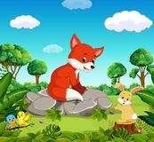 Fox in the forest. Illustration of fox in the forest Stock Photo