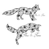 Illustration of foxes. Playing animals. Wild nature. Flora and fauna Stock Image