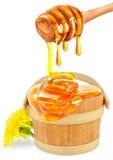 illustration för honung för kortsammansättning blom- Royaltyfri Bild