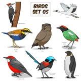 Illustration för vektor för fastställd tecknad film för fågel färgrik Arkivbild