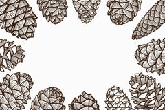 Christmas Pine Cones. Illustration Frame of Hand Drawn Sketch of Various Style of Lovely Christmas Pine Cones Isolated on White Background Stock Photos