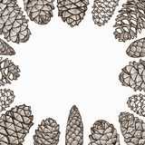 Christmas Pine Cones. Illustration Frame of Hand Drawn Sketch of Various Style of Lovely Christmas Pine Cones Isolated on White Background Royalty Free Stock Photos