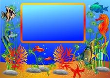 Illustration frame with undersea fish. And algae Stock Photo