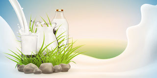 Illustration of fresh milk pouring in glass standing near bottle and hiding in grass with stones around, bright sunny background Royalty Free Stock Photos