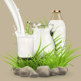 Illustration of fresh milk pouring in glass standing near full jug and bottle hiding in grass with stones around Royalty Free Stock Image