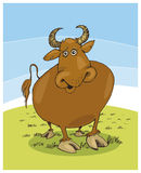 Illustration of funny bull Stock Photography