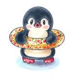 Funny cartoon penguin stock photography
