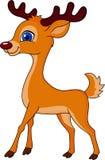 Cute deer cartoon Stock Photos