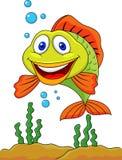 Fish cartoon. Illustration of funny fish cartoon Stock Photography