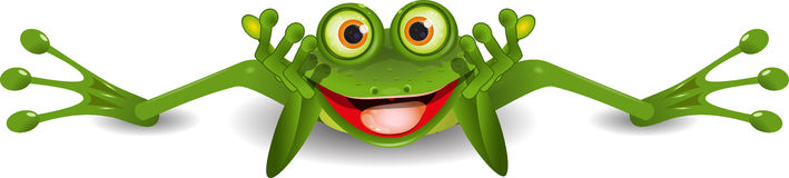 Funny frog is on his stomach Stock Photo