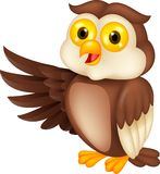 Funny owl cartoon waving Royalty Free Stock Images