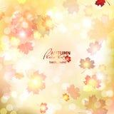 Illustration of fuzzy soft warm autumn background. Illustration of fuzzy soft warm autumn background, deadwood Royalty Free Stock Photography