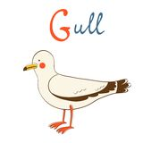 Illustration of G is for Gull Royalty Free Stock Photo