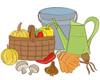 Illustration of garden tools and harvest basket Stock Image