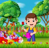 Gardener holding flower and watering can in a flower garden. Illustration of gardener holding flower and watering can in a flower garden Royalty Free Stock Photography