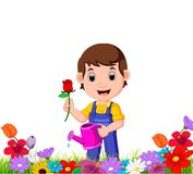Gardener holding flower and watering can in a flower garden. Illustration of gardener holding flower and watering can in a flower garden Stock Image