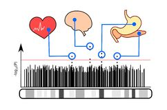 Illustration of genome-wide association studies Royalty Free Stock Photo