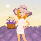 Girl in the lavender field Royalty Free Stock Photography