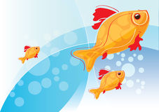 Illustration with gold fish. Aqua backdrop, vector template for design vector illustration