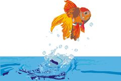 Illustration with goldfish Royalty Free Stock Photo