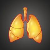 Illustration graphique des poumons humains illustration stock
