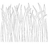 Illustration of grass and plant outlines Royalty Free Stock Photography