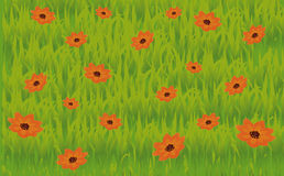 Illustration grassland Royalty Free Stock Image