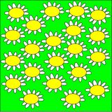 Illustration on a green background large daisy flowers with white petals and yellow heart Royalty Free Stock Images