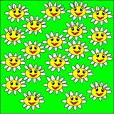 Illustration on a green background large daisy flowers with white petals and yellow heart smile and look Royalty Free Stock Photography