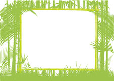 Bamboo jungle frame Stock Images
