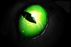 Illustration of a green cat eye. Vector illustration of drops for animals. for advertising publications Royalty Free Stock Photography
