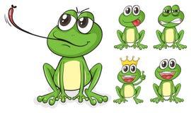 Green frogs Stock Photos