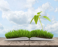 Illustration of green landscape with sprout covered grass on an open book. On cloudy sky background. Sign and symbol. Knowledge is power. Inner and spiritual Royalty Free Stock Image