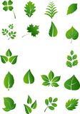 Green leaf icons set white background for you design. Illustration of Green leaf icons set white backgroundGreen leaf icons set white background for you design Vector Illustration