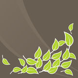 Illustration of green leafs. Vector Royalty Free Stock Image