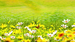 Illustration of green meadows and flowers