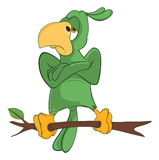 Illustration of Green Parrot Cartoon Character Stock Photo
