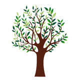 Illustration of green tree, isolated nature symbol, vector Stock Photo