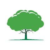 Illustration of green tree. Royalty Free Stock Image